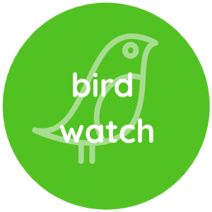 Bird Watch
